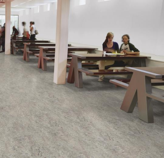 Marmoleum Vivace Flooring