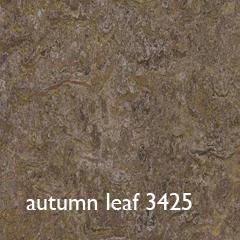 autumn leaf 3425 txt