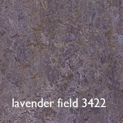 lavender field 3422 txt