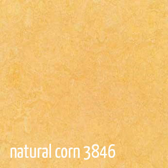 Marmoleum Click Tile Flooring Eco Building Products