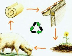 Black Mountain Sheep Wool Insulation - 16