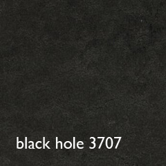 shade_black hole_t3707